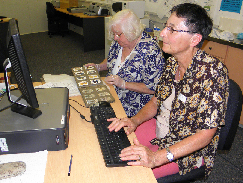 Two museum volunteers sitting in front of a pc;